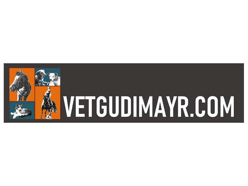 Gudi Mayr